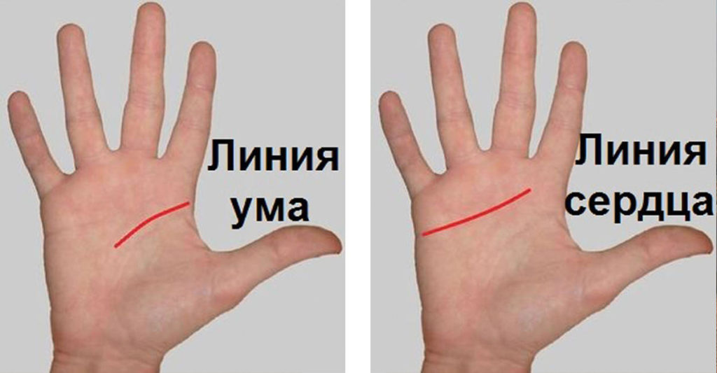 признался, что линия актера на руке фото такому