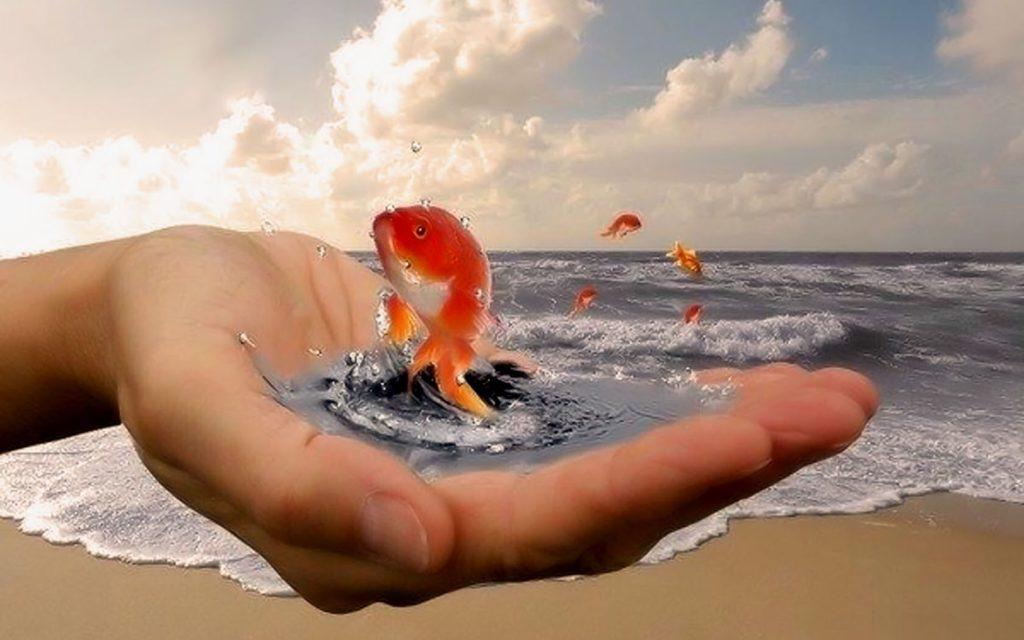 Гадание Золотая Рыбка 3 желания онлайн