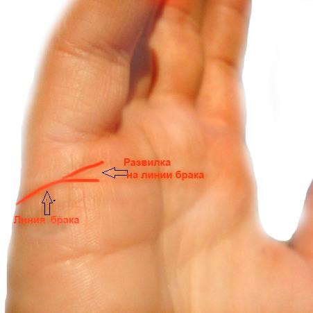 где линия брака на руке фото запаса александра попросили