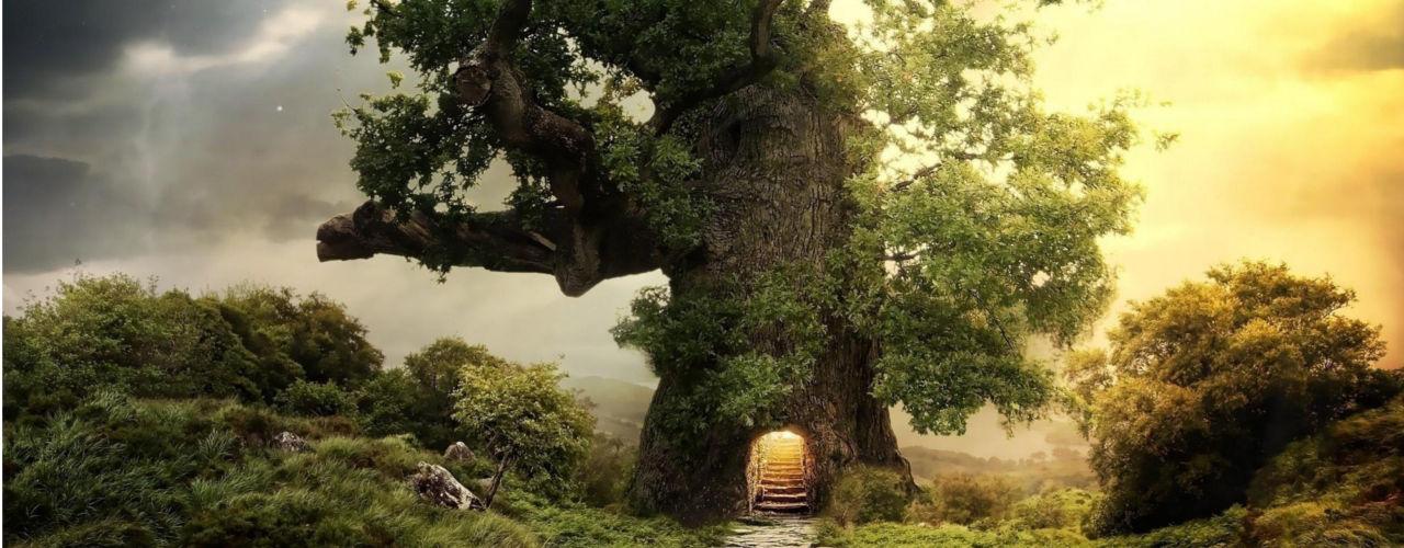 Гадание дерево желаний