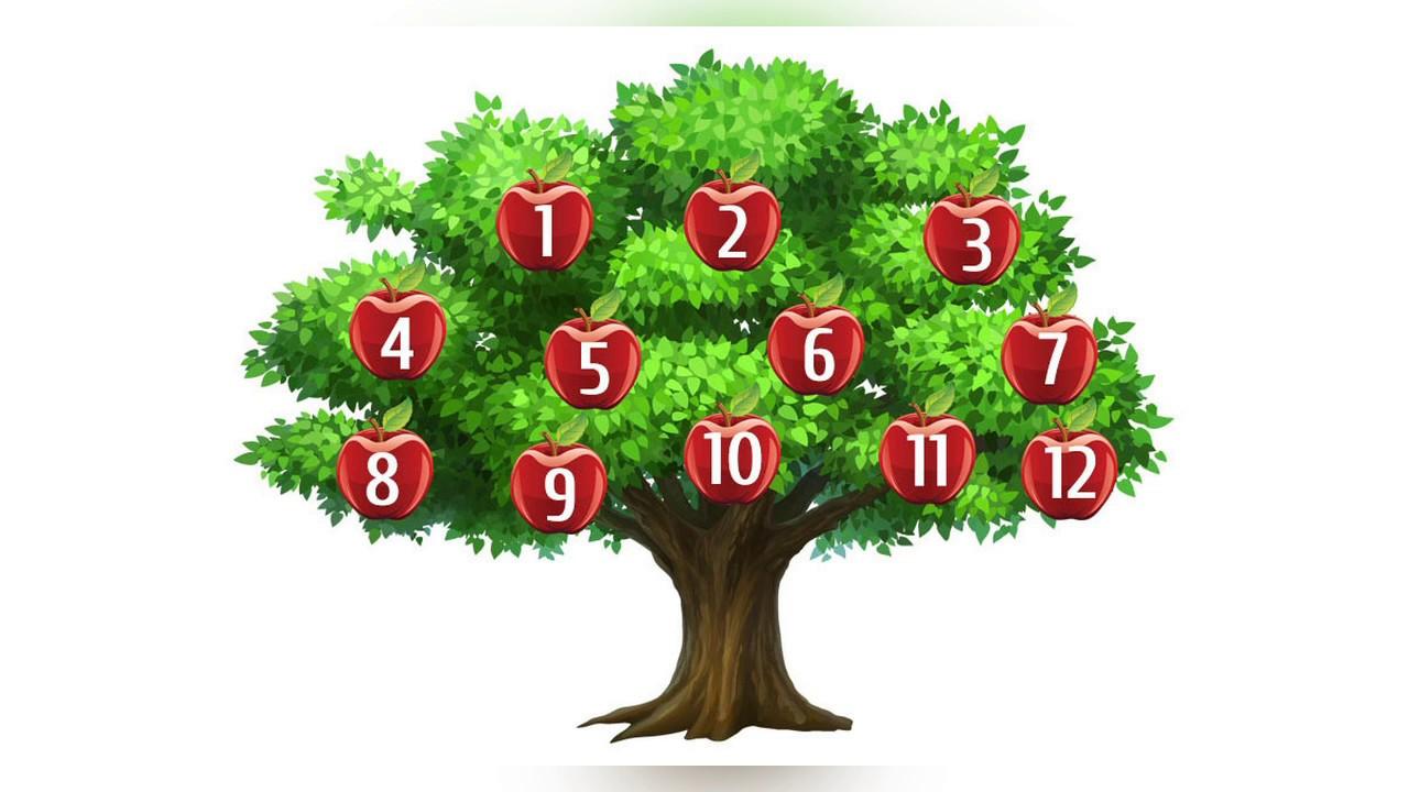 Гадание дерево желаний онлайн