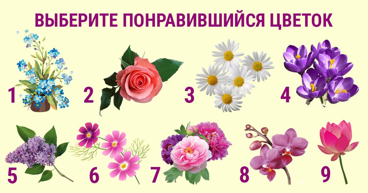 Гадание на цветах - пасьянс онлайн бесплатно