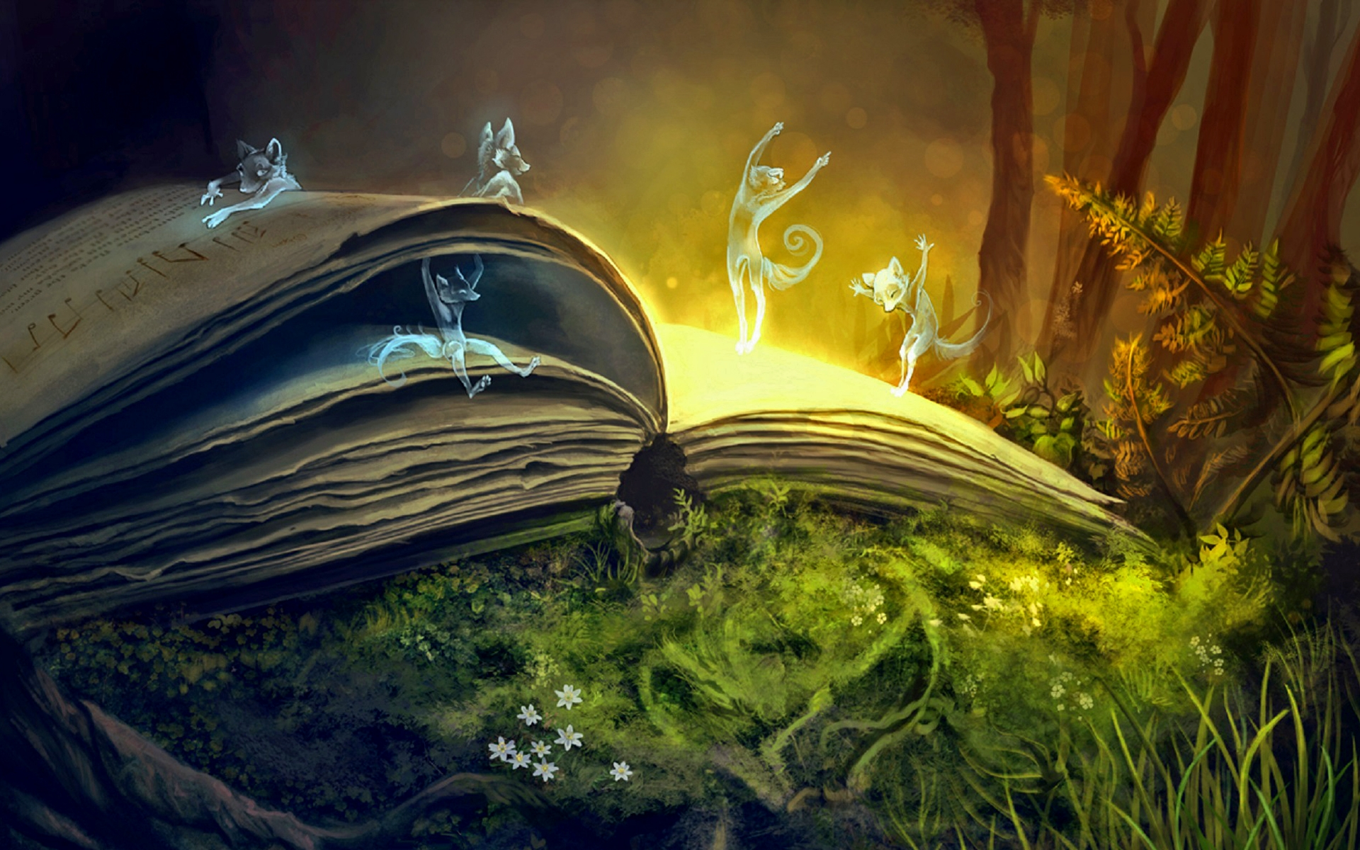 Книжное гадание: описание