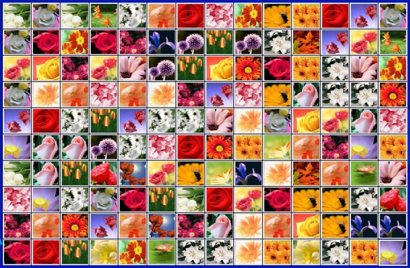 Описание гадания на цветах