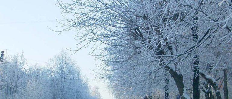 какая будет зима