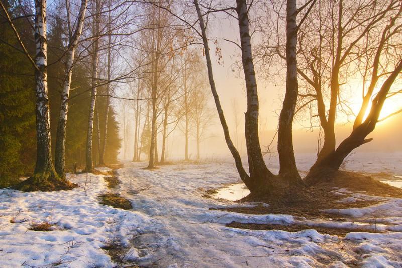 снег на сухую землю