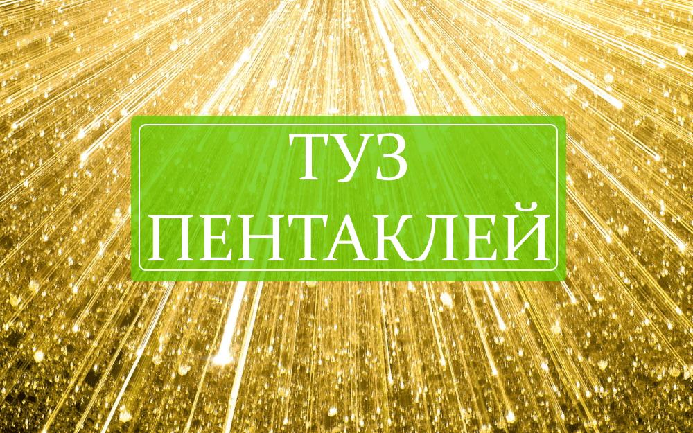Значение карты Туз пентаклей