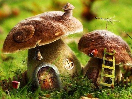 К чему снится червивые грибы