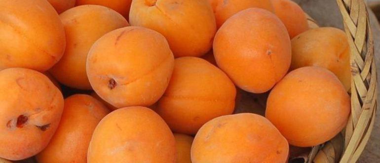 снятся абрикосы