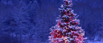 снится елка