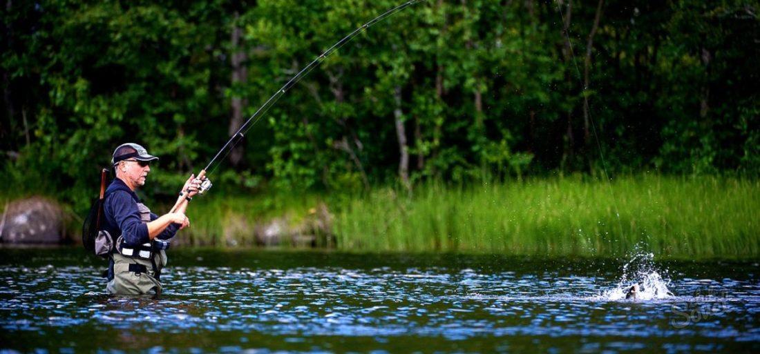 снится ловить рыбу на удочку