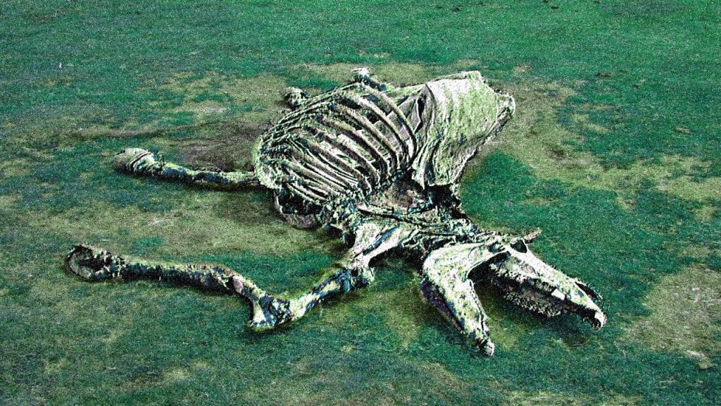 снится мертвая лошадь