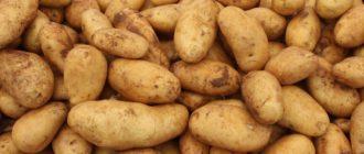снится много картошки