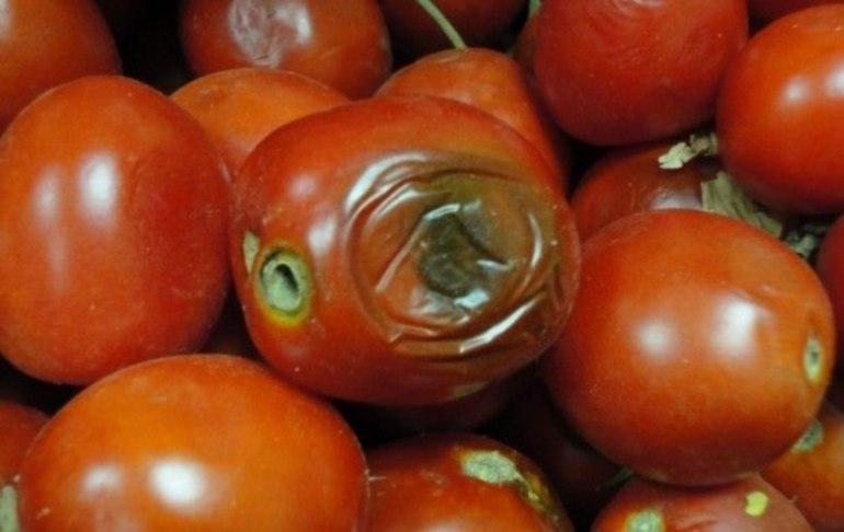снятся гнилые помидоры