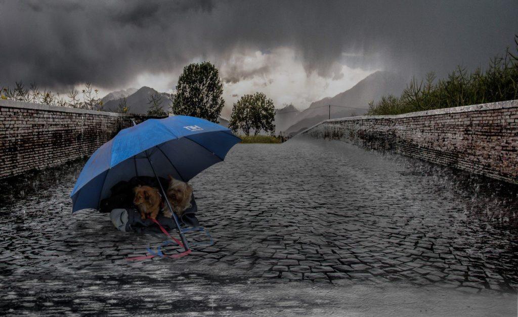 Погода в Саратовской области на сегодня - пятница 24 сентября 2021 года