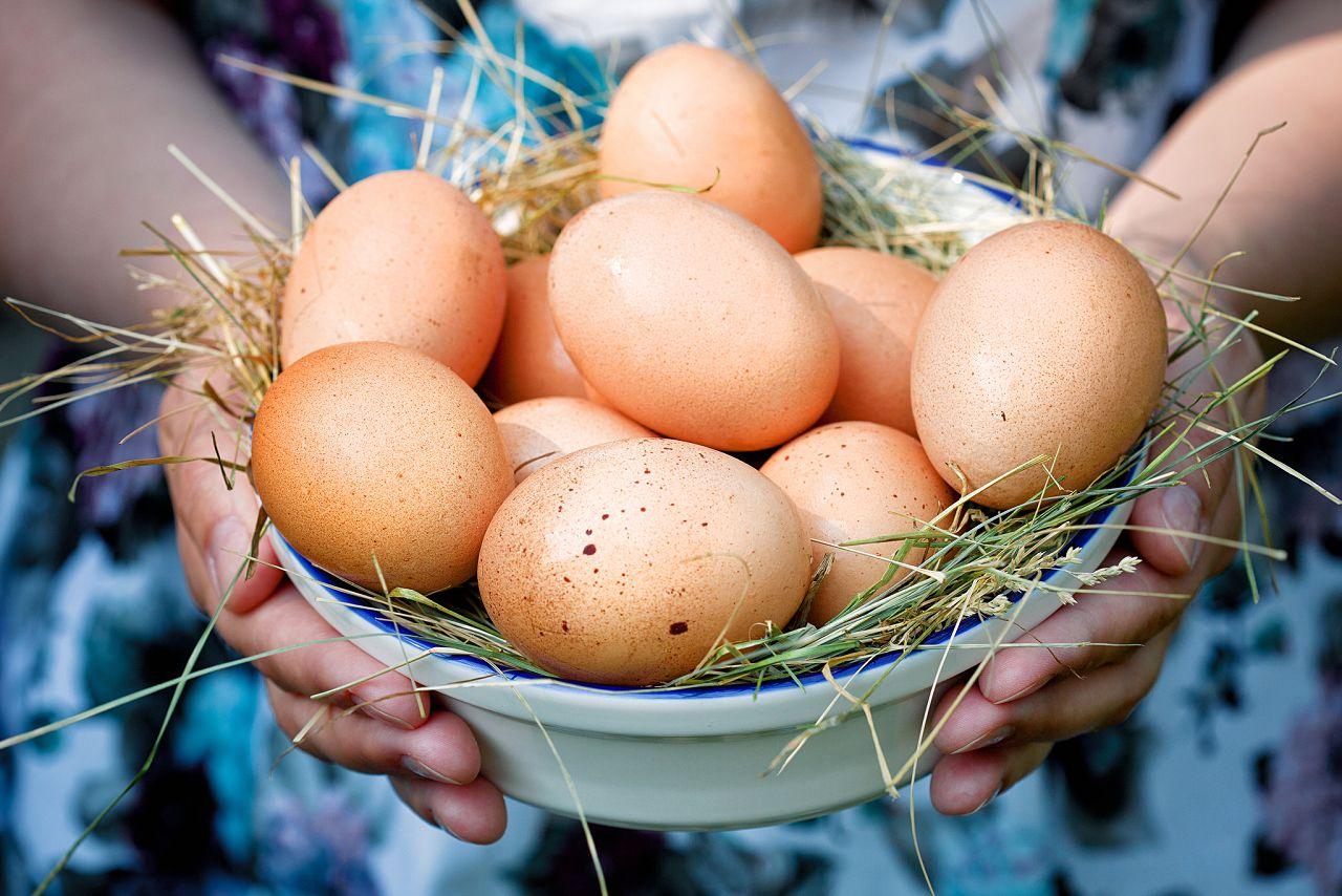 К чему снится много куриных яиц