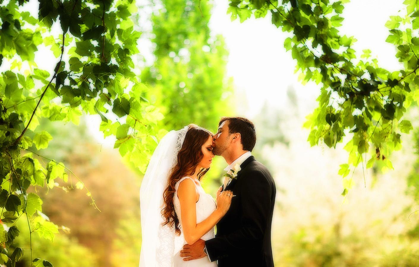 снится свадьба с бывшим парнем