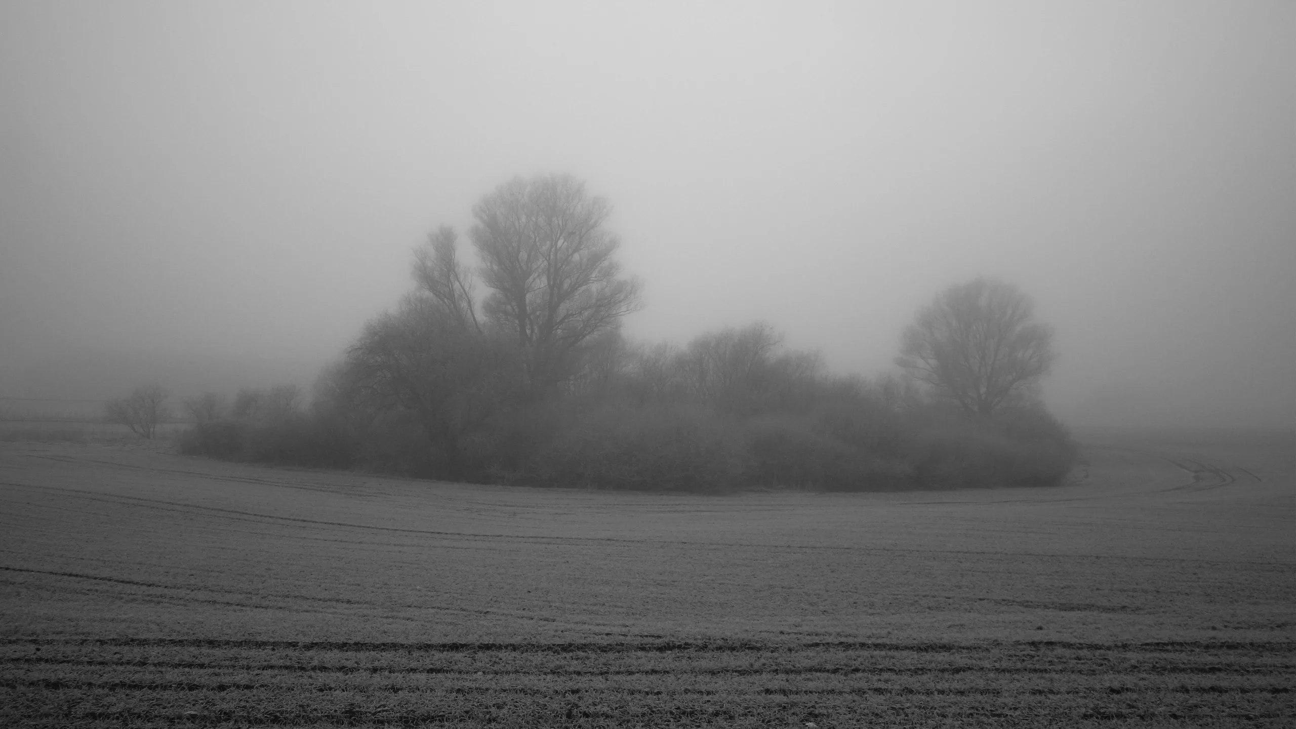 снится туман густой