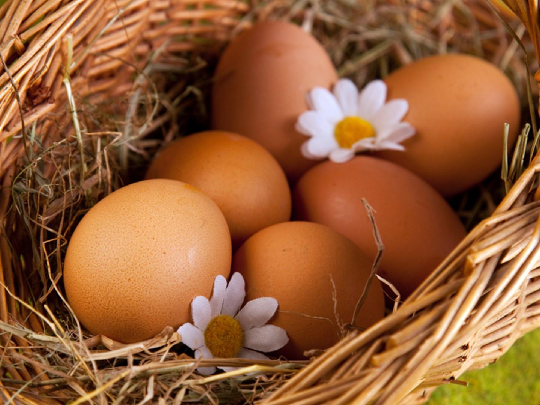 К чему снятся куриные яички