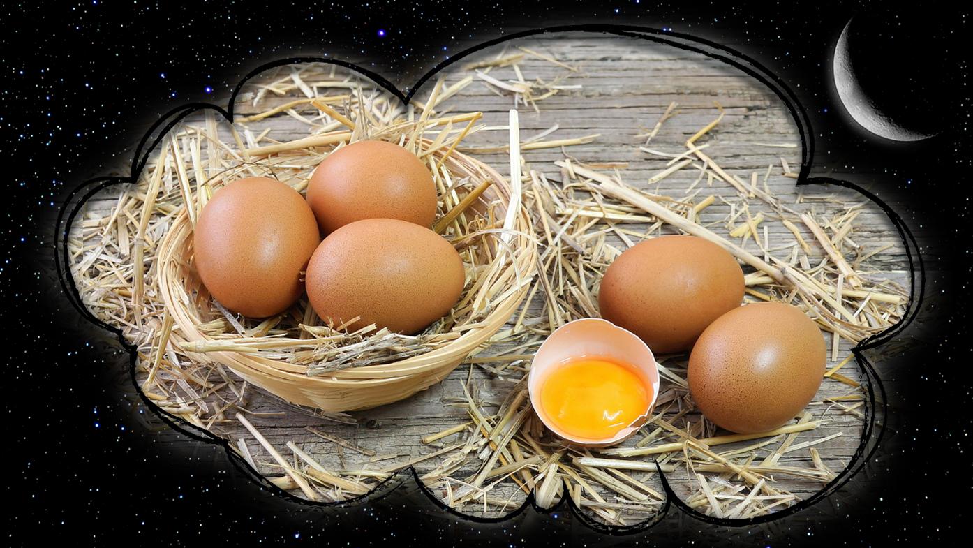 снятся яйца куриные