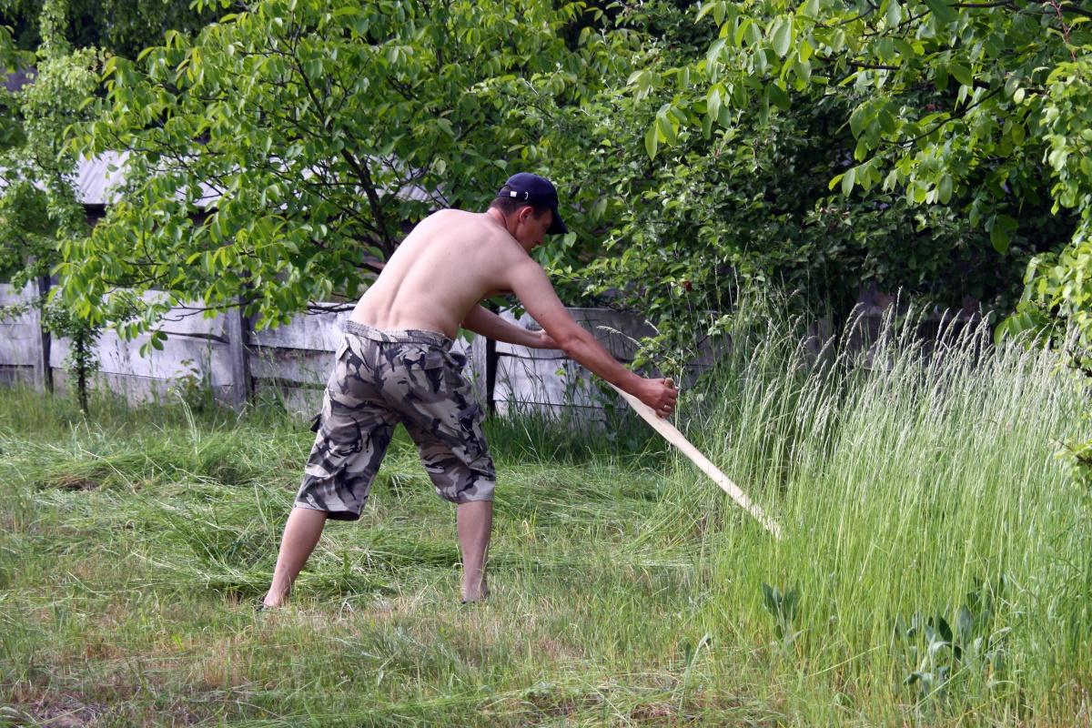 Косить траву